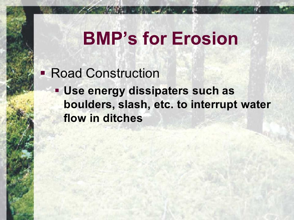  Road Construction  Use energy dissipaters such as boulders, slash, etc.