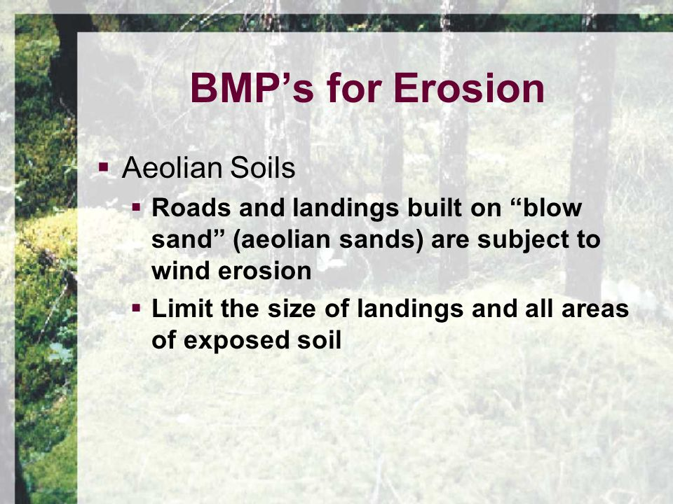  Aeolian Soils  Roads and landings built on blow sand (aeolian sands) are subject to wind erosion  Limit the size of landings and all areas of exposed soil BMP's for Erosion