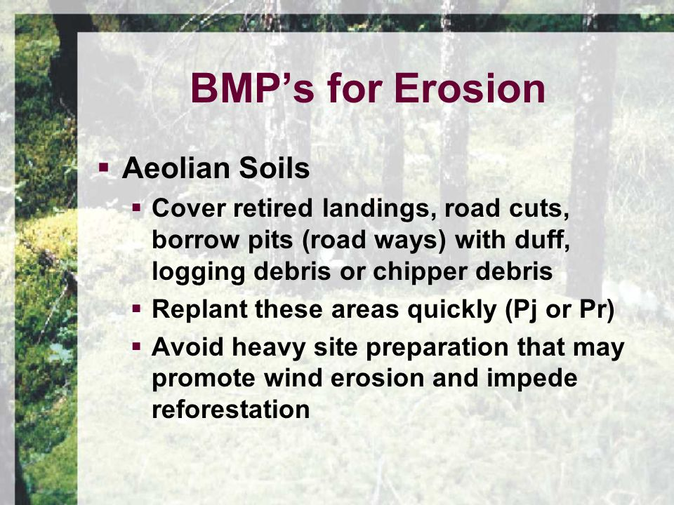  Aeolian Soils  Cover retired landings, road cuts, borrow pits (road ways) with duff, logging debris or chipper debris  Replant these areas quickly (Pj or Pr)  Avoid heavy site preparation that may promote wind erosion and impede reforestation BMP's for Erosion