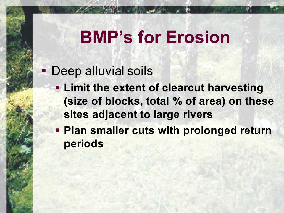  Deep alluvial soils  Limit the extent of clearcut harvesting (size of blocks, total % of area) on these sites adjacent to large rivers  Plan smaller cuts with prolonged return periods BMP's for Erosion
