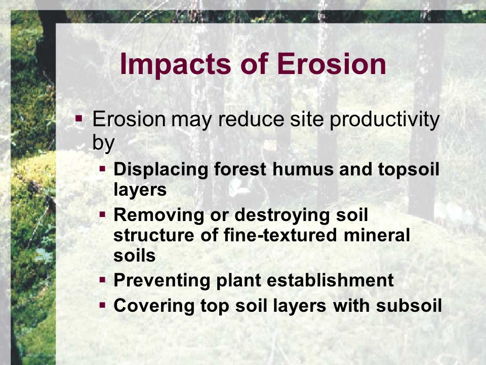 Impacts of Erosion  Erosion may reduce site productivity by  Displacing forest humus and topsoil layers  Removing or destroying soil structure of fine-textured mineral soils  Preventing plant establishment  Covering top soil layers with subsoil