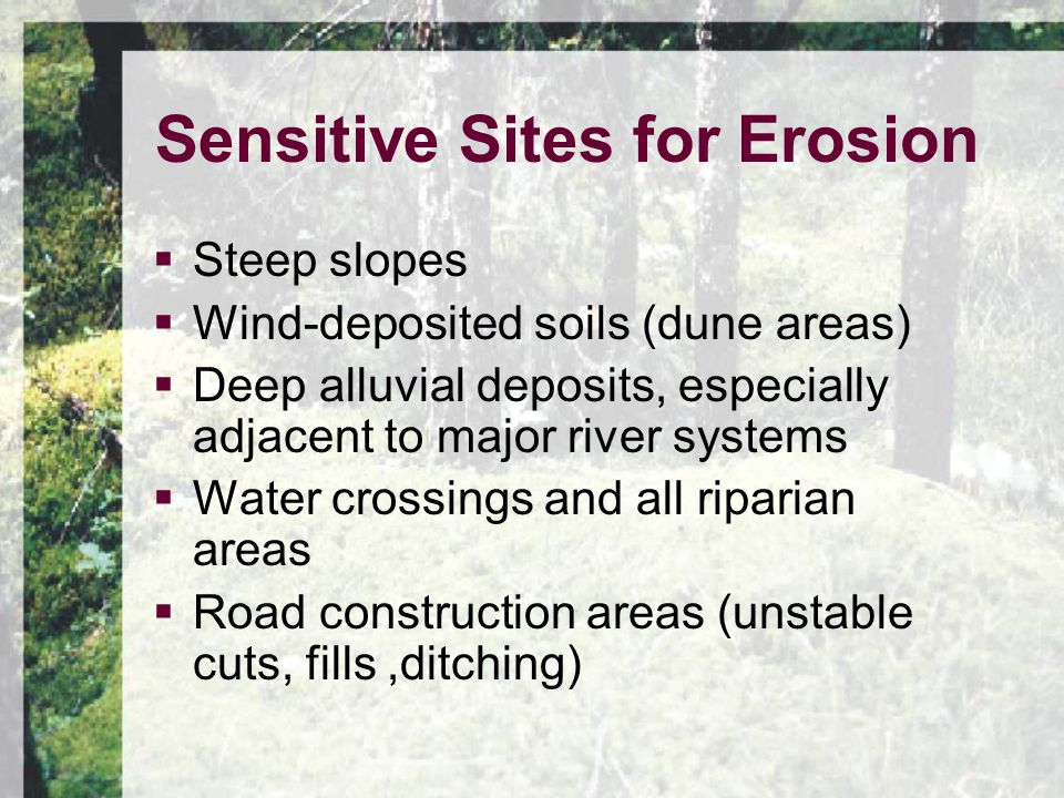 Sensitive Sites for Erosion  Steep slopes  Wind-deposited soils (dune areas)  Deep alluvial deposits, especially adjacent to major river systems  Water crossings and all riparian areas  Road construction areas (unstable cuts, fills,ditching)