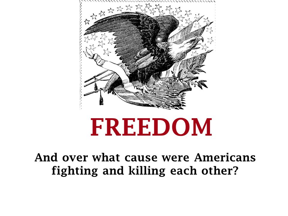 FREEDOM And over what cause were Americans fighting and killing each other