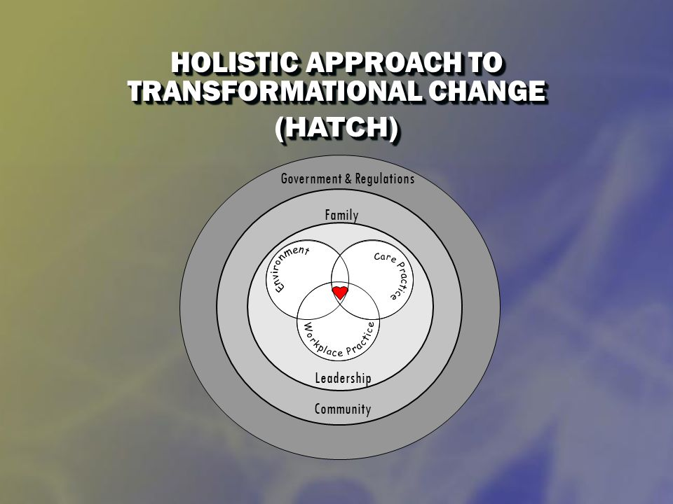 HOLISTIC APPROACH TO TRANSFORMATIONAL CHANGE (HATCH) (HATCH) Leadership Government & Regulations Community Family
