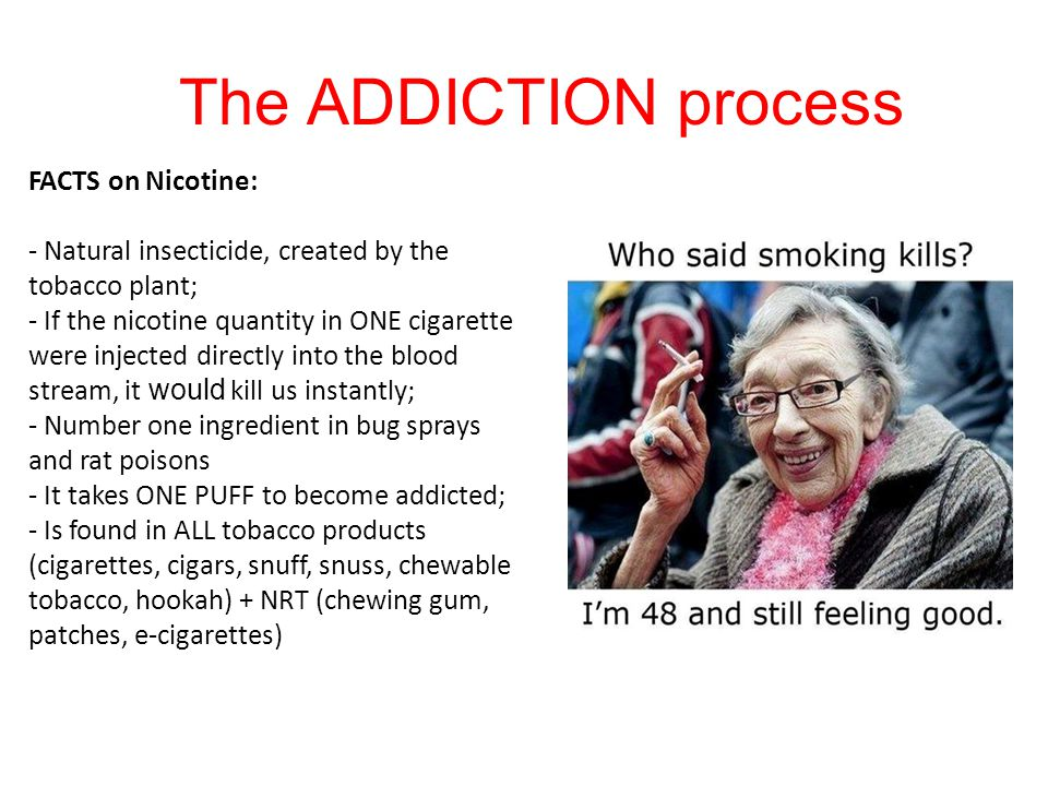 The ADDICTION process FACTS on Nicotine: - Natural insecticide, created by the tobacco plant; - If the nicotine quantity in ONE cigarette were injected directly into the blood stream, it would kill us instantly; - Number one ingredient in bug sprays and rat poisons - It takes ONE PUFF to become addicted; - Is found in ALL tobacco products (cigarettes, cigars, snuff, snuss, chewable tobacco, hookah) + NRT (chewing gum, patches, e-cigarettes)