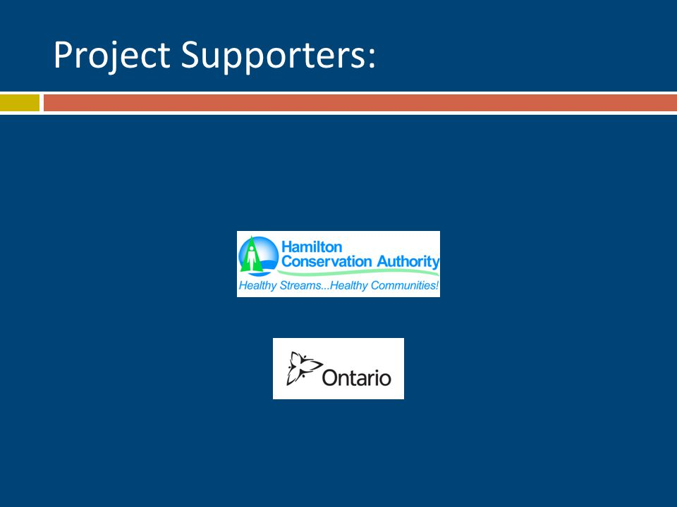 Project Supporters: