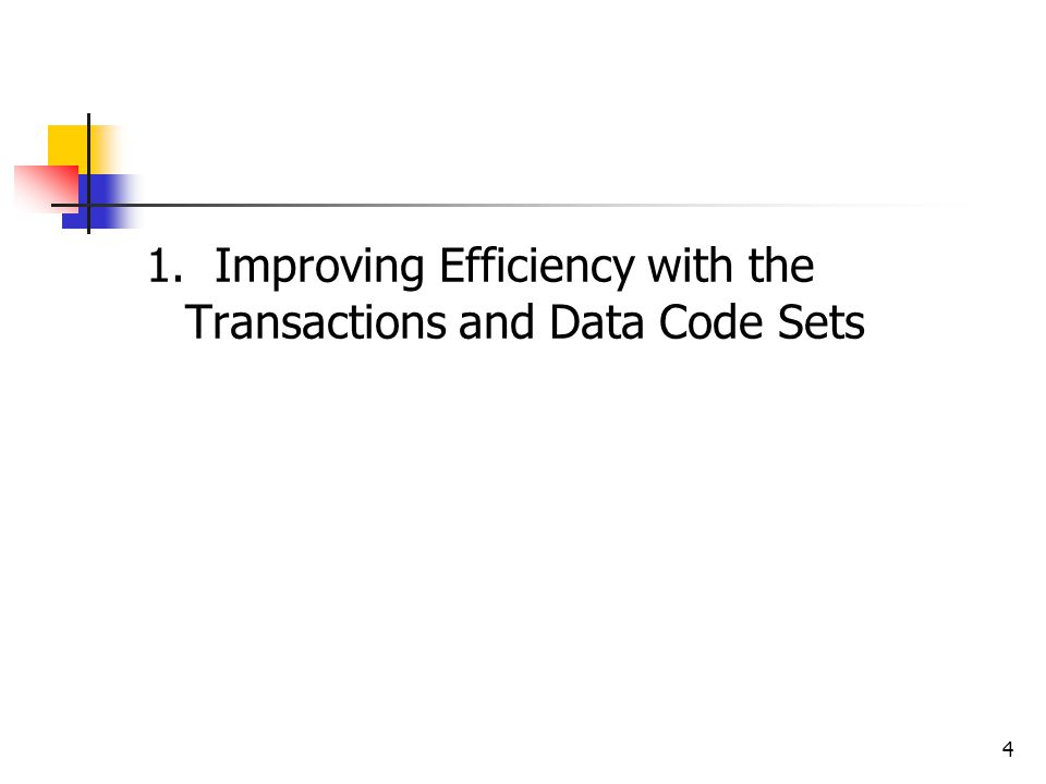 4 1. Improving Efficiency with the Transactions and Data Code Sets