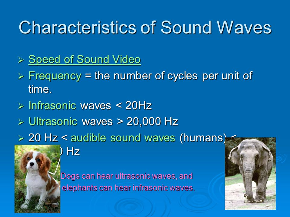 Cont.- Frequency determines pitch  The frequency of an audible sound wave determines how high of low we perceive the sound to be, known as pitch.