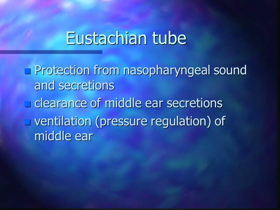 Eustachian tube n Protection from nasopharyngeal sound and secretions n clearance of middle ear secretions n ventilation (pressure regulation) of middle ear