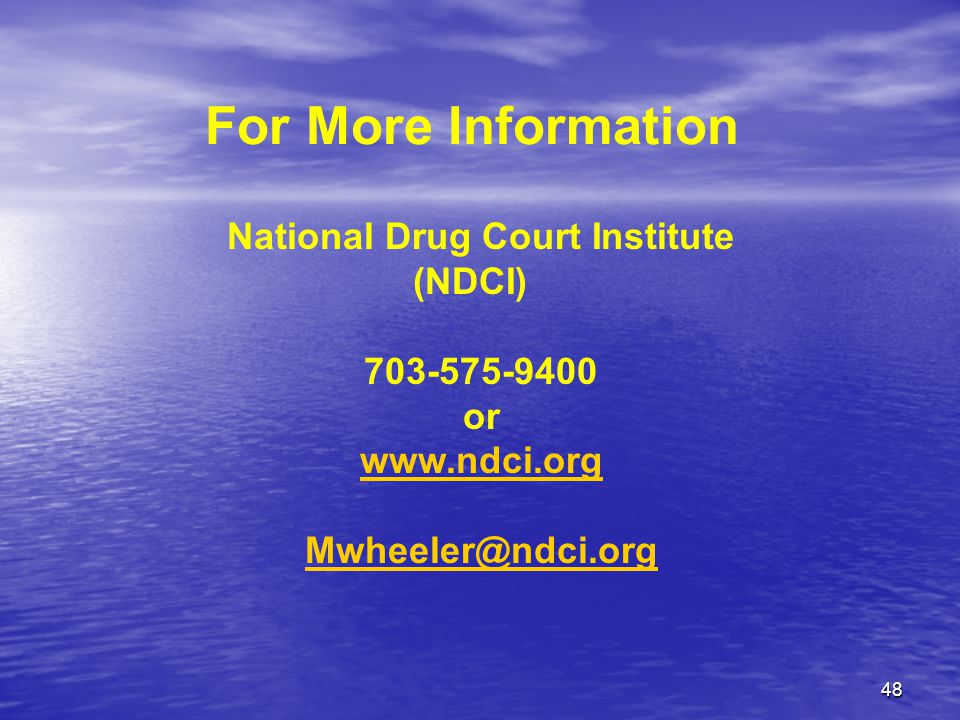 48 For More Information National Drug Court Institute (NDCI) 703-575-9400 or www.ndci.org Mwheeler@ndci.org