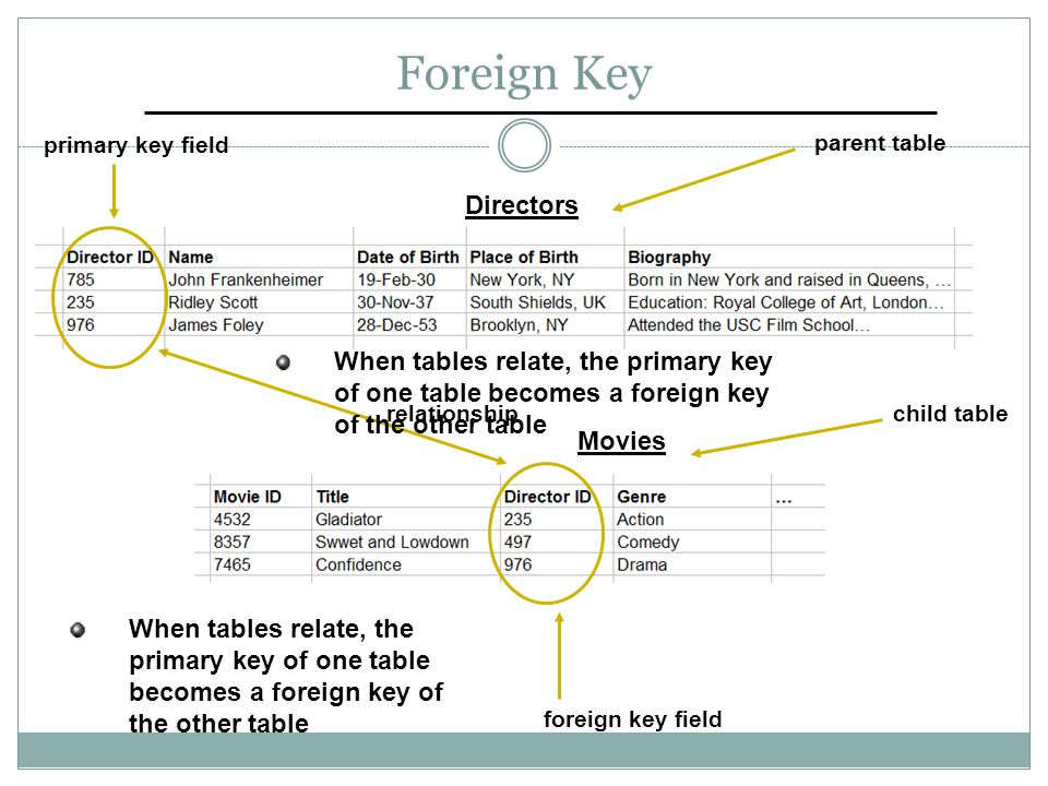 Foreign Key foreign key field primary key field parent table Directors Movies child tablerelationship When tables relate, the primary key of one table becomes a foreign key of the other table