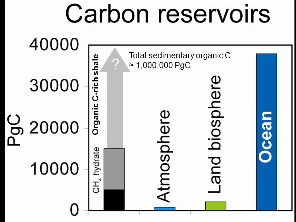 Total sedimentary organic C ≈ 1,000,000 PgC
