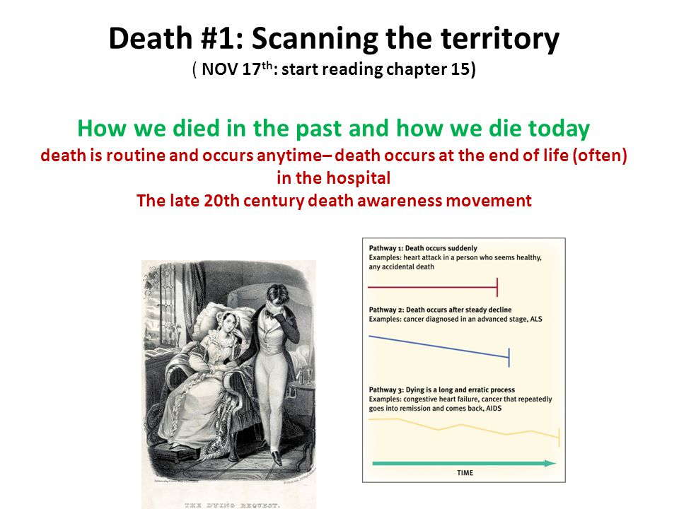 Death #1: Scanning the territory ( NOV 17 th : start reading chapter 15) How we died in the past and how we die today death is routine and occurs anyt