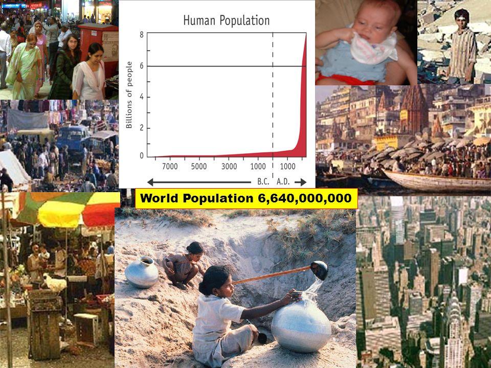 World Population 6,640,000,000