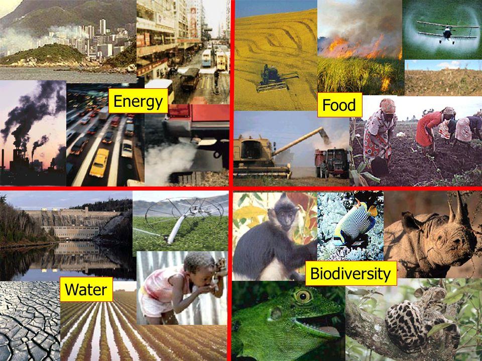 Energy Food Water Biodiversity