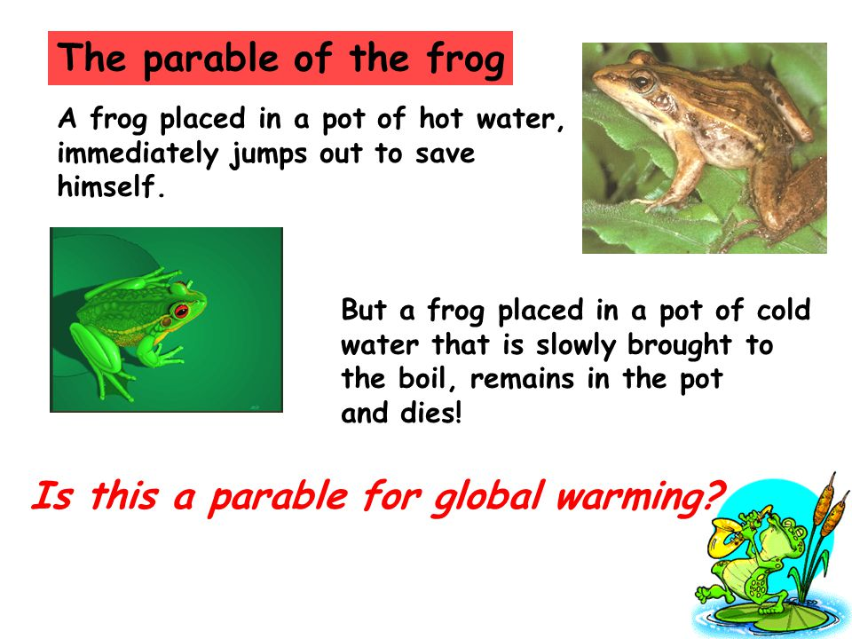 The parable of the frog A frog placed in a pot of hot water, immediately jumps out to save himself.