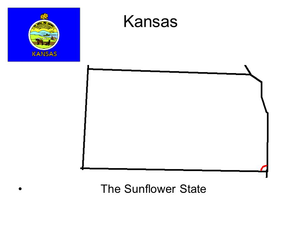 Kansas The Sunflower State