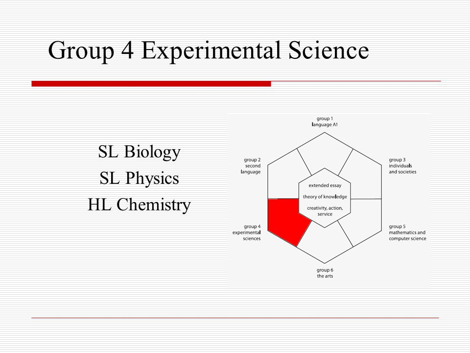 Group 4 Objectives It is the intention of IB that students achieve the following objectives: 1.