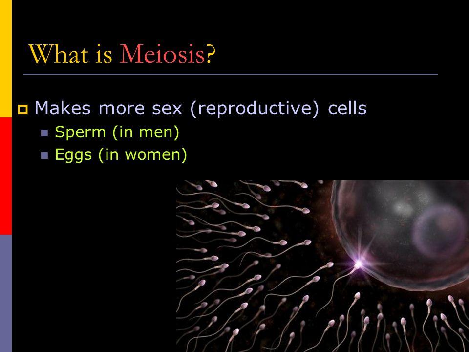 Who cares. No meiosis, no fertilization.  No fertilization, no offspring.