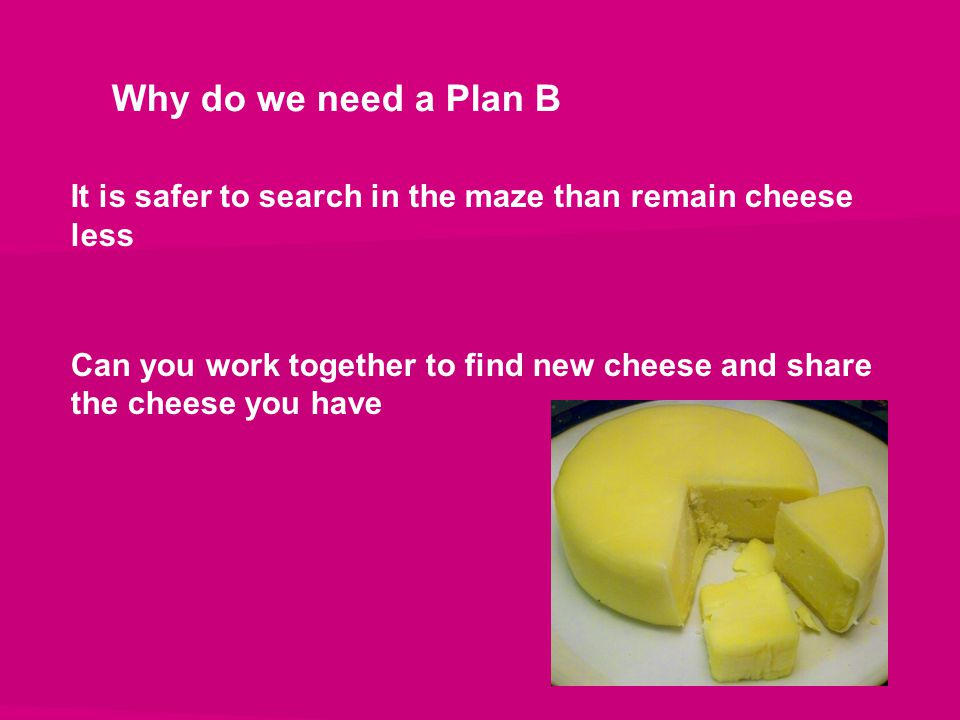Why do we need a Plan B It is safer to search in the maze than remain cheese less Can you work together to find new cheese and share the cheese you ha