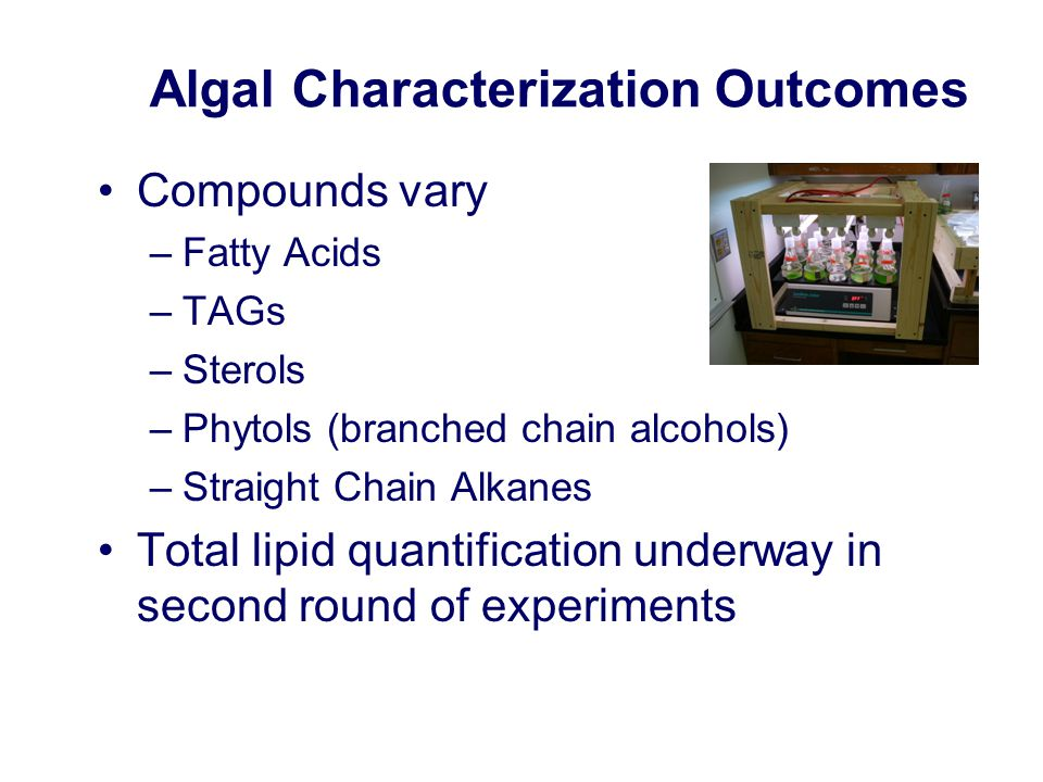 Algal Characterization Outcomes Compounds vary –Fatty Acids –TAGs –Sterols –Phytols (branched chain alcohols) –Straight Chain Alkanes Total lipid quantification underway in second round of experiments