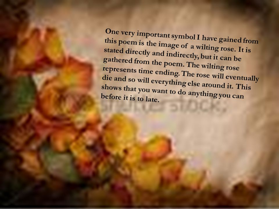 One very important symbol I have gained from this poem is the image of a wilting rose. It is stated directly and indirectly, but it can be gathered fr