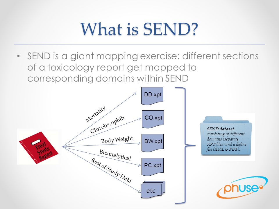 What is SEND? SEND is a giant mapping exercise: different sections of a toxicology report get mapped to corresponding domains within SEND Final Study