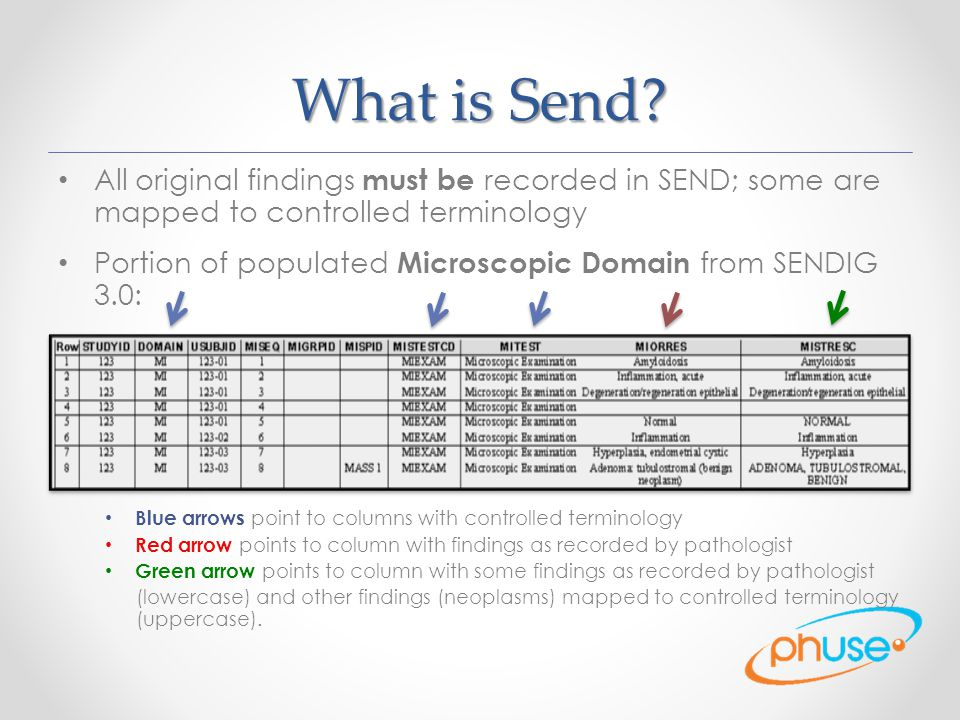 What is Send.