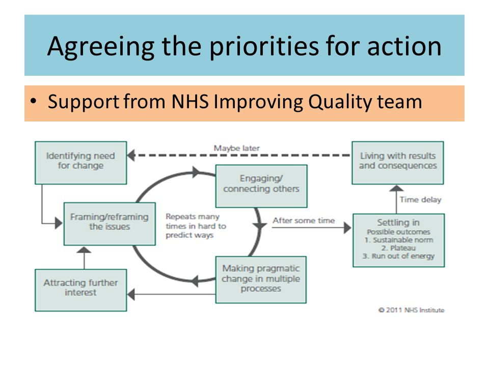 Agreeing the priorities for action Support from NHS Improving Quality team