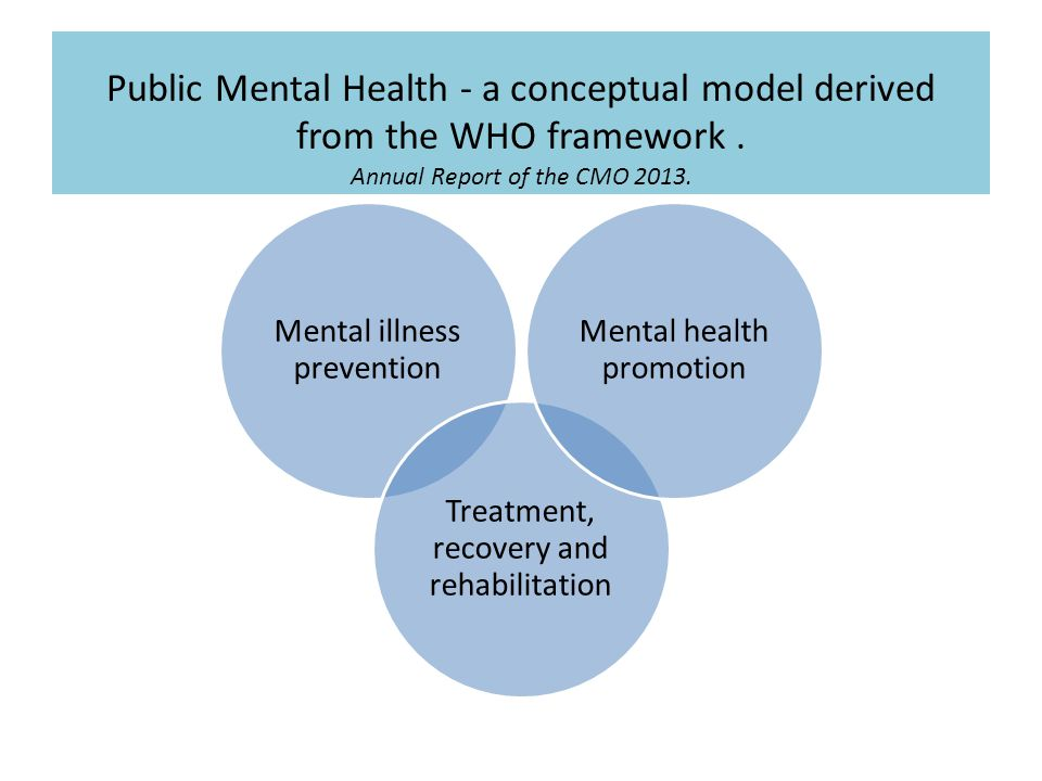 Public Mental Health - a conceptual model derived from the WHO framework.