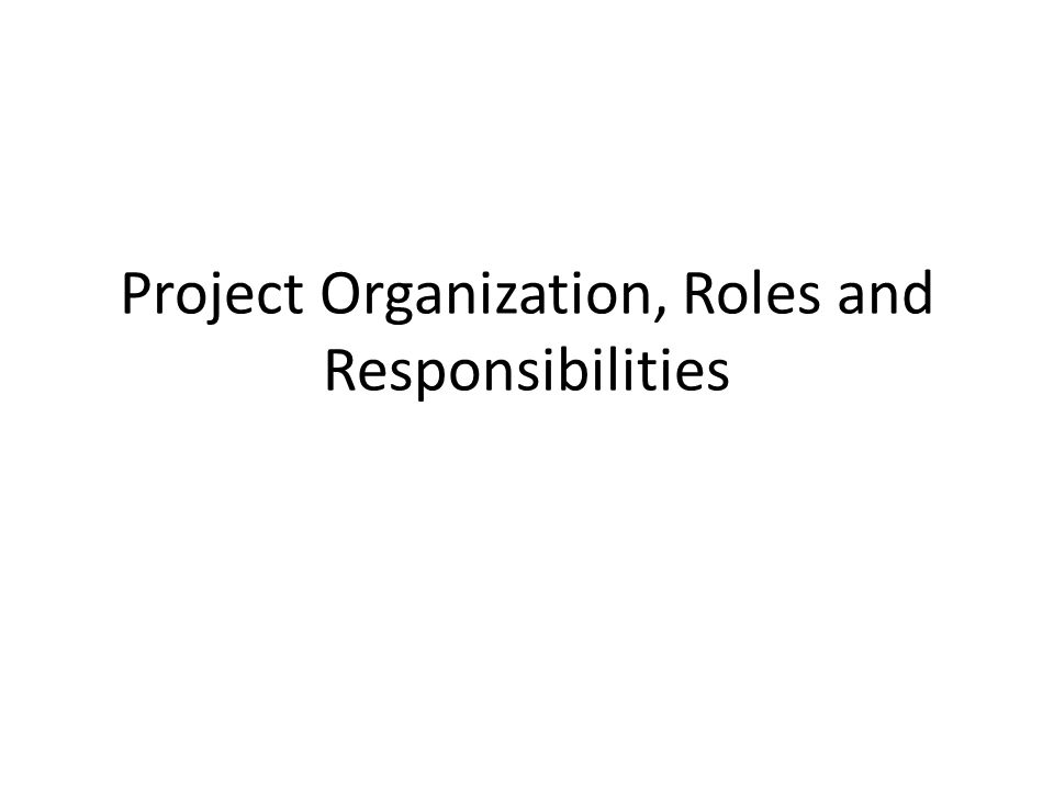 Project Organization, Roles and Responsibilities
