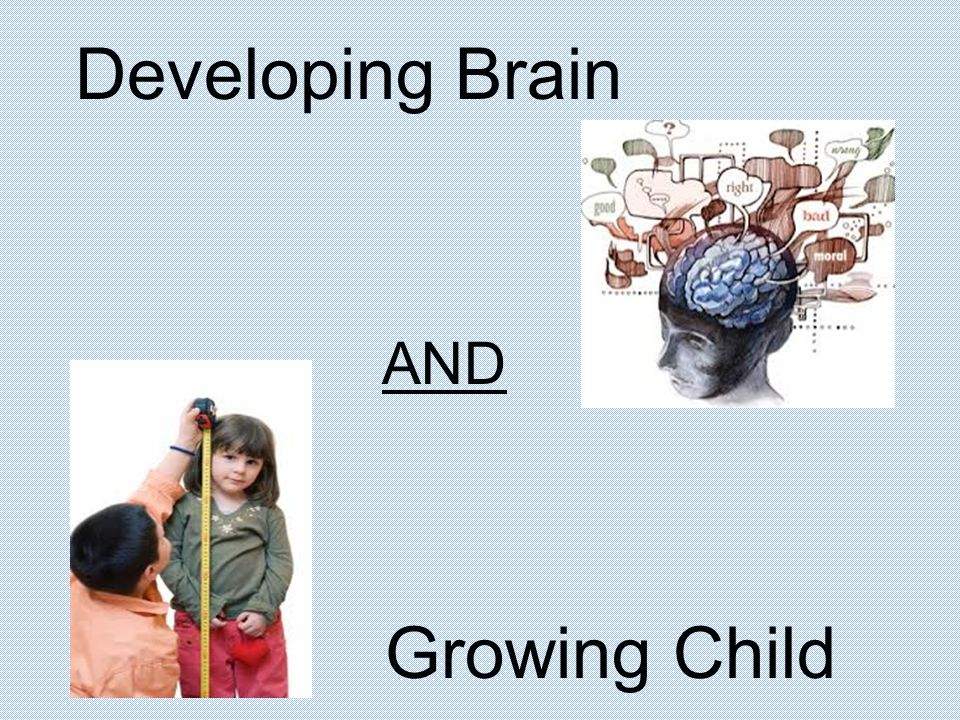 Developing Brain AND Growing Child