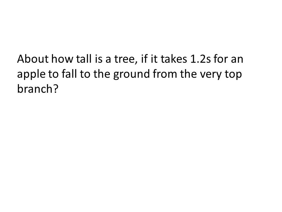 About how tall is a tree, if it takes 1.2s for an apple to fall to the ground from the very top branch?