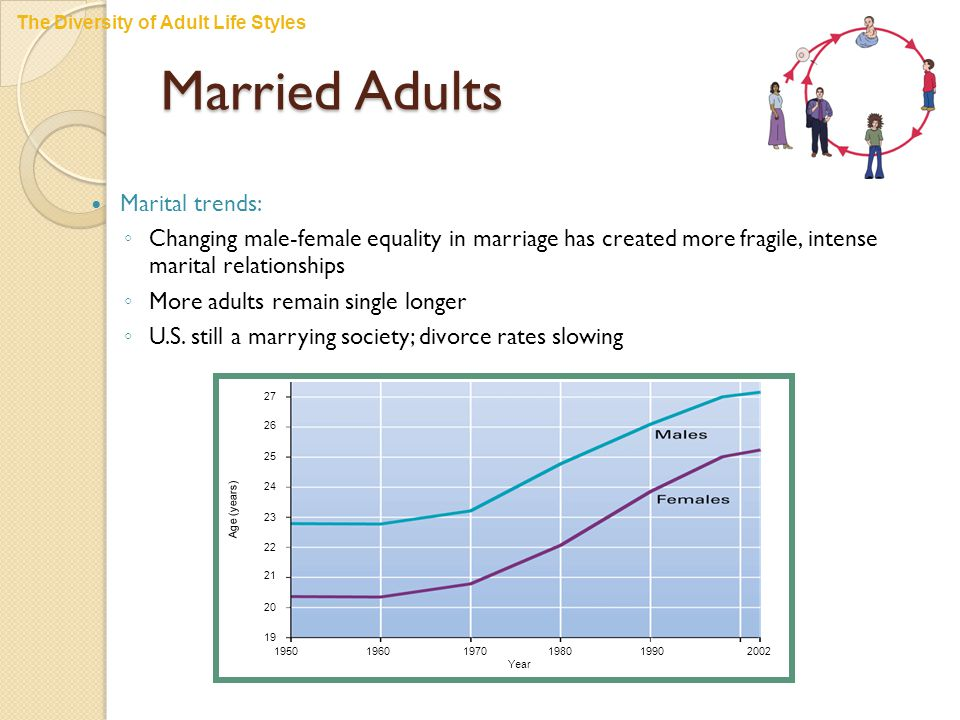 Married Adults Marital trends: ◦ Changing male-female equality in marriage has created more fragile, intense marital relationships ◦ More adults remain single longer ◦ U.S.