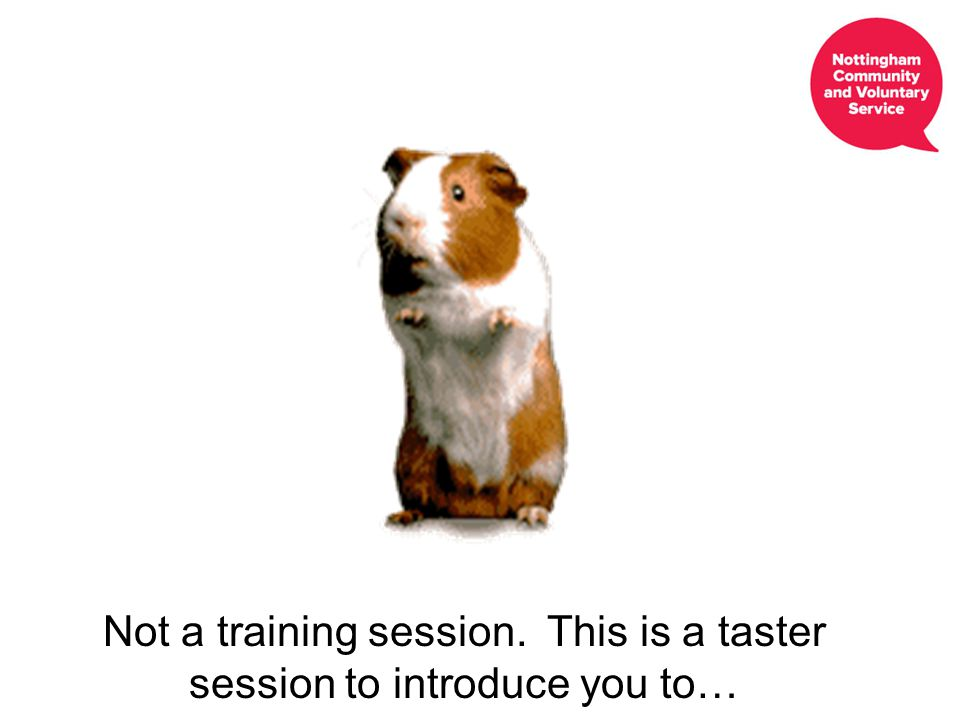 Not a training session. This is a taster session to introduce you to…