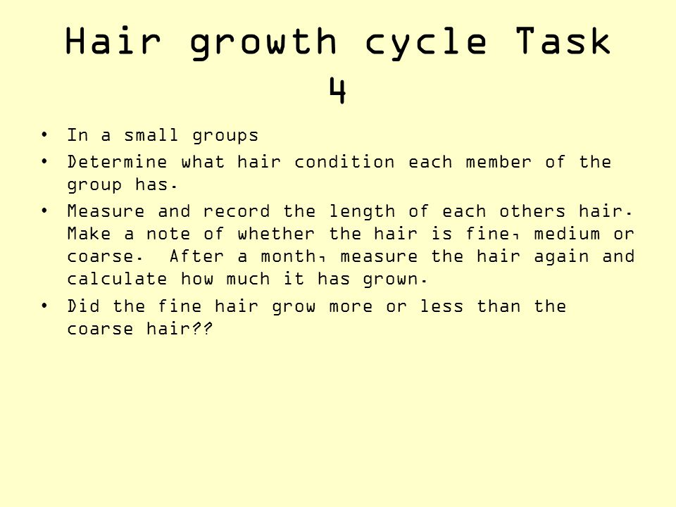 Hair growth cycle Task 4 In a small groups Determine what hair condition each member of the group has. Measure and record the length of each others ha