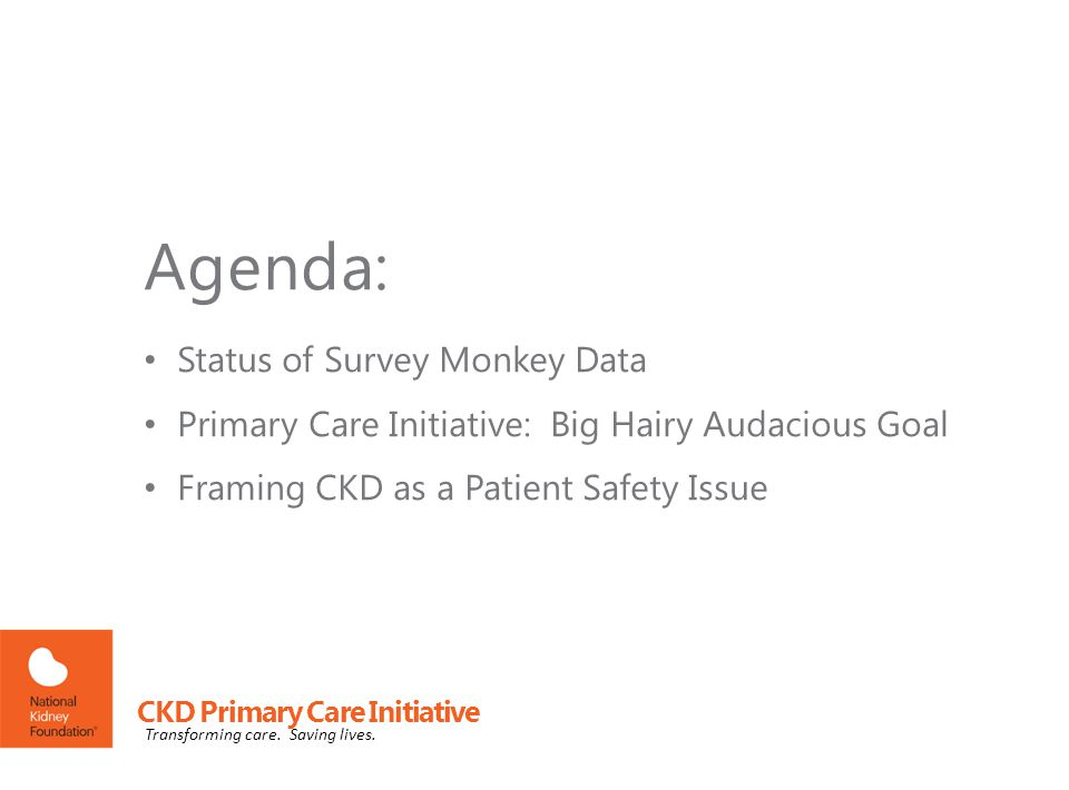 Status of Survey Monkey Data Primary Care Initiative: Big Hairy Audacious Goal Framing CKD as a Patient Safety Issue Agenda: CKD Primary Care Initiative Transforming care.
