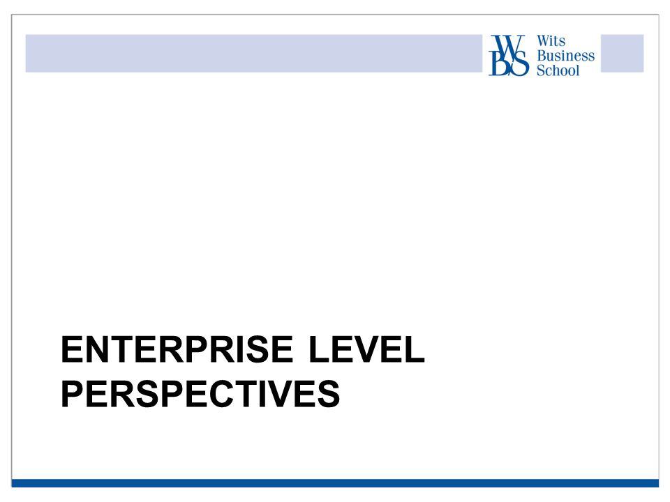 ENTERPRISE LEVEL PERSPECTIVES