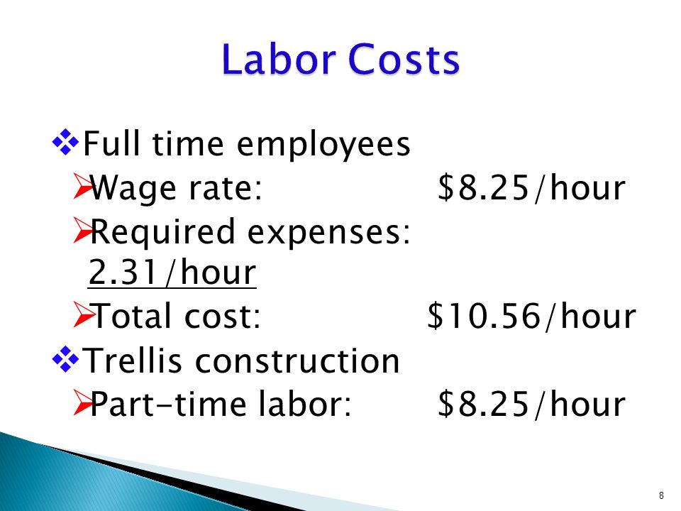  Full time employees  Wage rate: $8.25/hour  Required expenses: 2.31/hour  Total cost: $10.56/hour  Trellis construction  Part-time labor: $8.25/hour 8