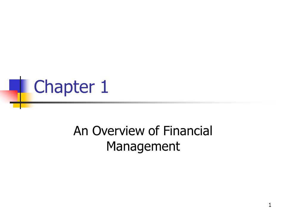 1 Chapter 1 An Overview of Financial Management