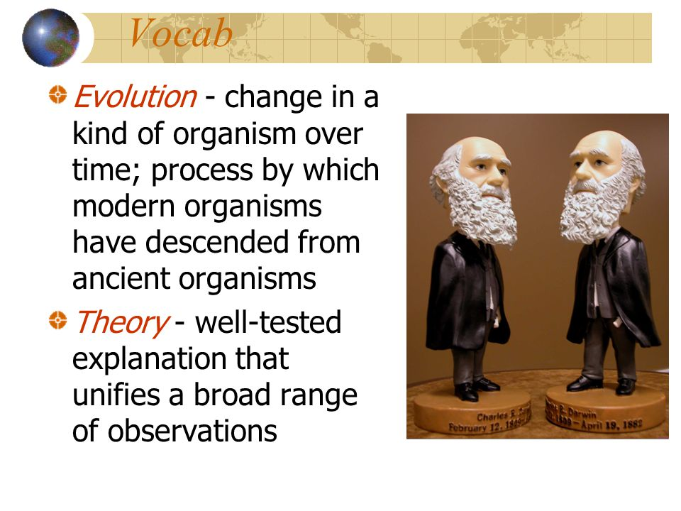 Vocab Evolution - change in a kind of organism over time; process by which modern organisms have descended from ancient organisms Theory - well-tested