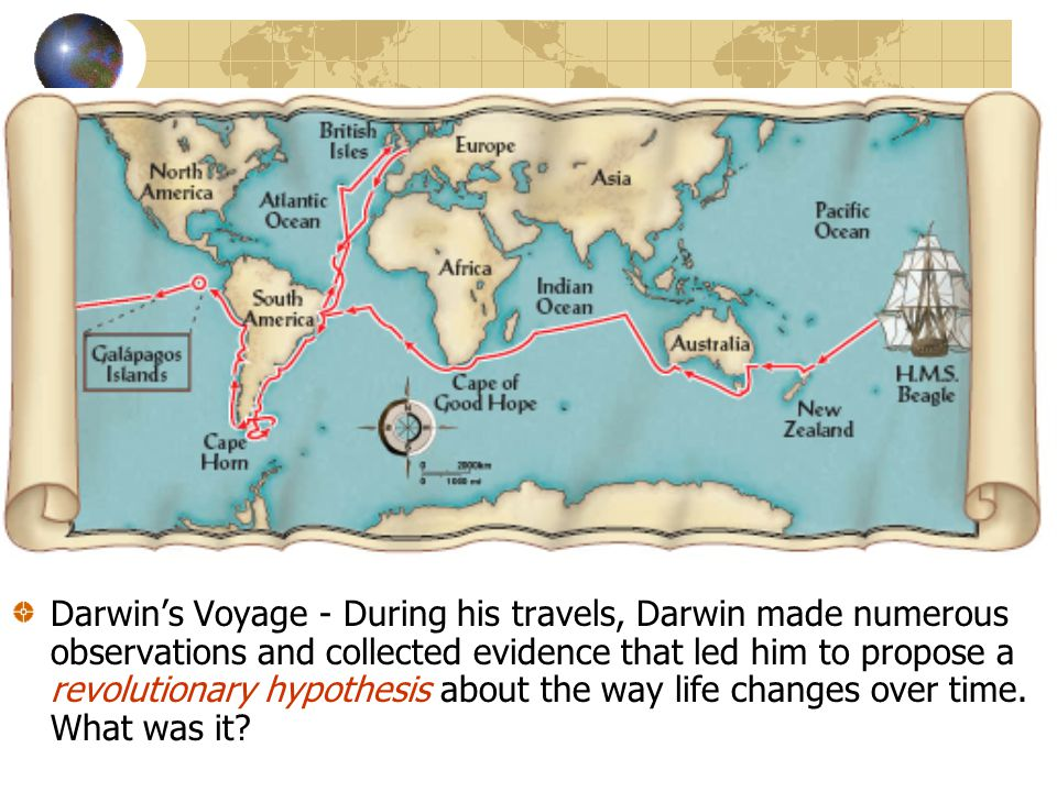 Voyage of the Beagle (1839 - 1844) Darwin's Voyage - During his travels, Darwin made numerous observations and collected evidence that led him to prop