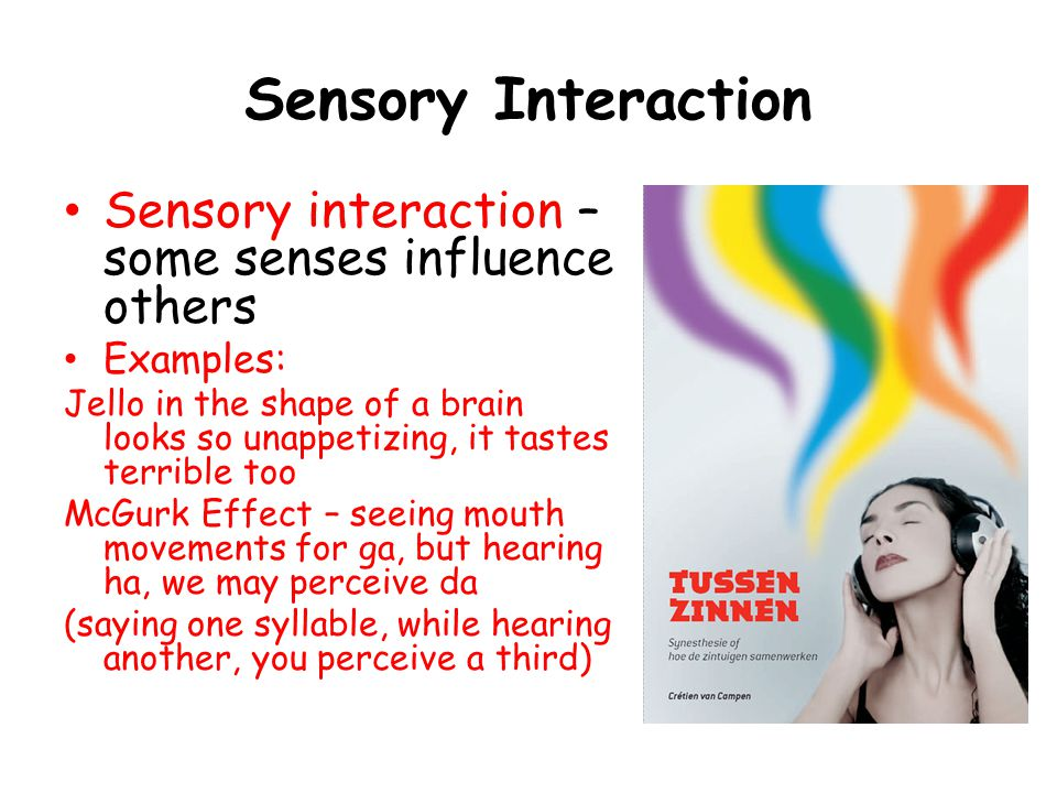 Sensory Interaction Sensory interaction – some senses influence others Examples: Jello in the shape of a brain looks so unappetizing, it tastes terrible too McGurk Effect – seeing mouth movements for ga, but hearing ha, we may perceive da (saying one syllable, while hearing another, you perceive a third)