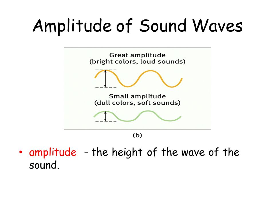 Amplitude of Sound Waves amplitude - the height of the wave of the sound.
