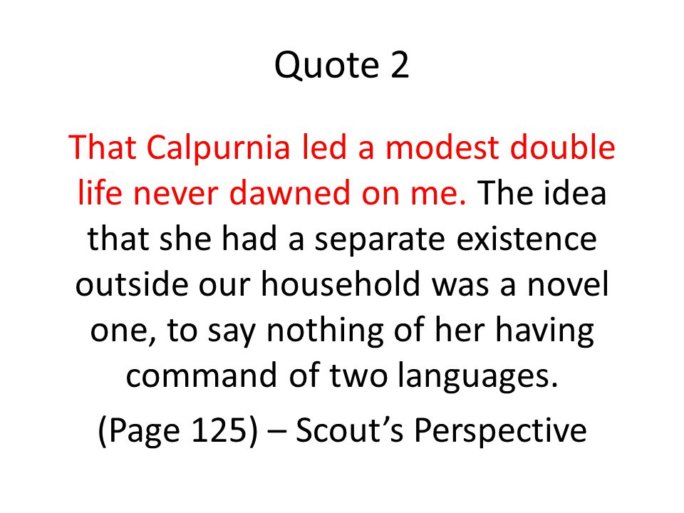 Quote 2 That Calpurnia led a modest double life never dawned on me.