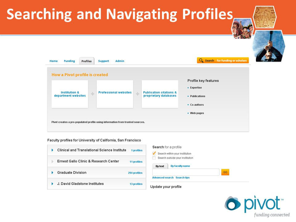 Searching and Navigating Profiles