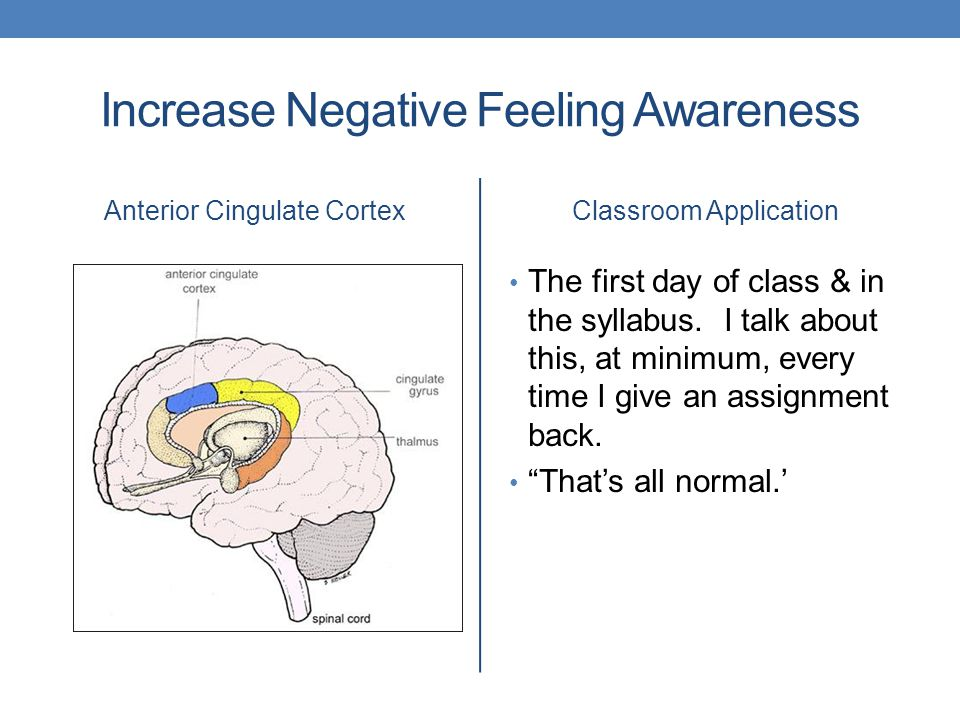 Increase Negative Feeling Awareness Anterior Cingulate CortexClassroom Application The first day of class & in the syllabus.