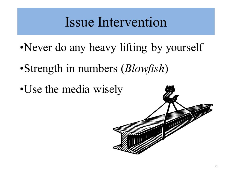 25 Issue Intervention Never do any heavy lifting by yourself Strength in numbers (Blowfish) Use the media wisely