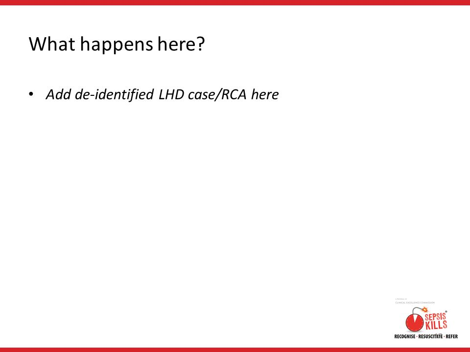 What happens here Add de-identified LHD case/RCA here 17